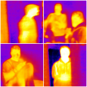 Human Recognition in Infrared Images